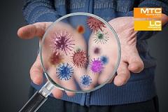 Schulungsreihe: ReinWissen - Reinigung und Hygiene kompakt - Modul 5